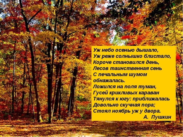 Стихи Пушкина про осень