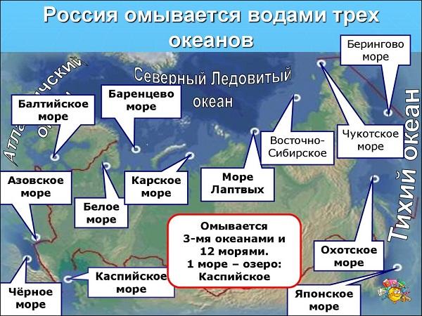 Сколько морей омывает Россию какие берега на карте фото названия и описание