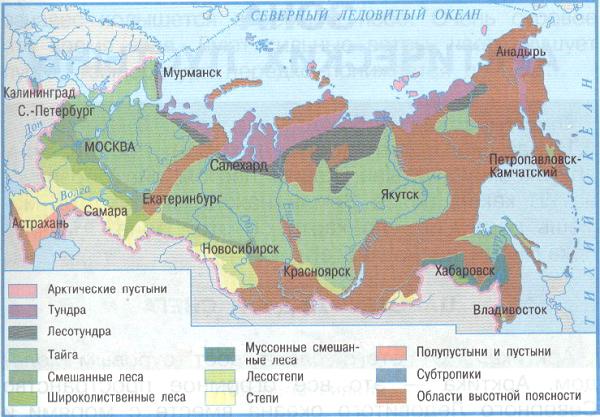 Лесостепи россии географическое положение
